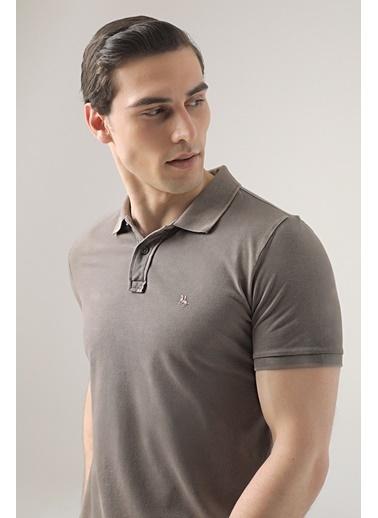 D'S Damat Regular Fit Safran Pike Dokulu T-Shirt Vizon